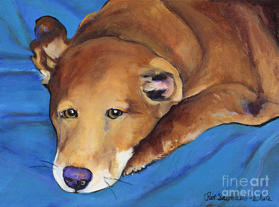 Dog Portrait Painting - Blue Blanket by Pat Saunders-White