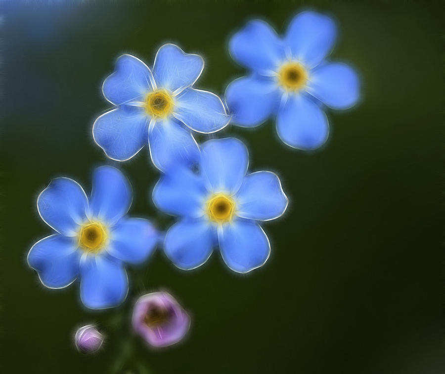 Blue Photograph - Blue By You by Chris Hartman Price