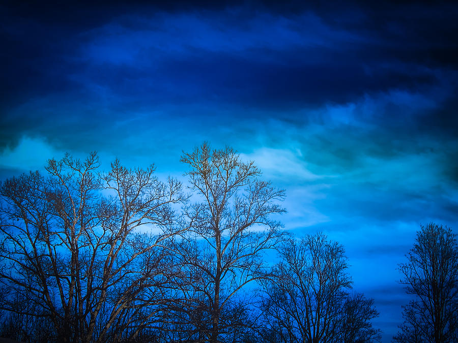Hdr Photograph - Blue Delight by Victoria Ashley