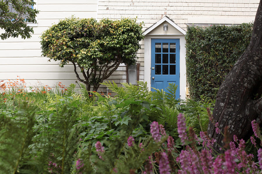 House Photograph - Blue Door by Denice Breaux