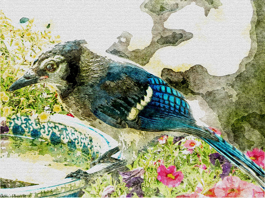 Nature Digital Art - Blue Jay Art by Debbie Portwood