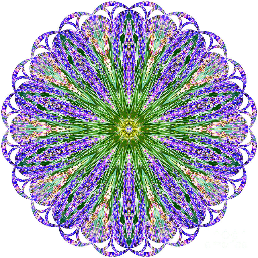 Kaleidoscope Photograph - Blue Lavender Floral Kaleidoscope by Carol F Austin