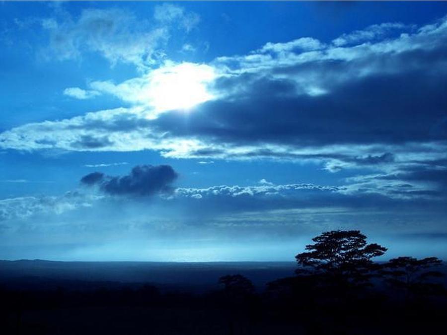Hawaii Photograph - Blue Lights by Nadi Leonard