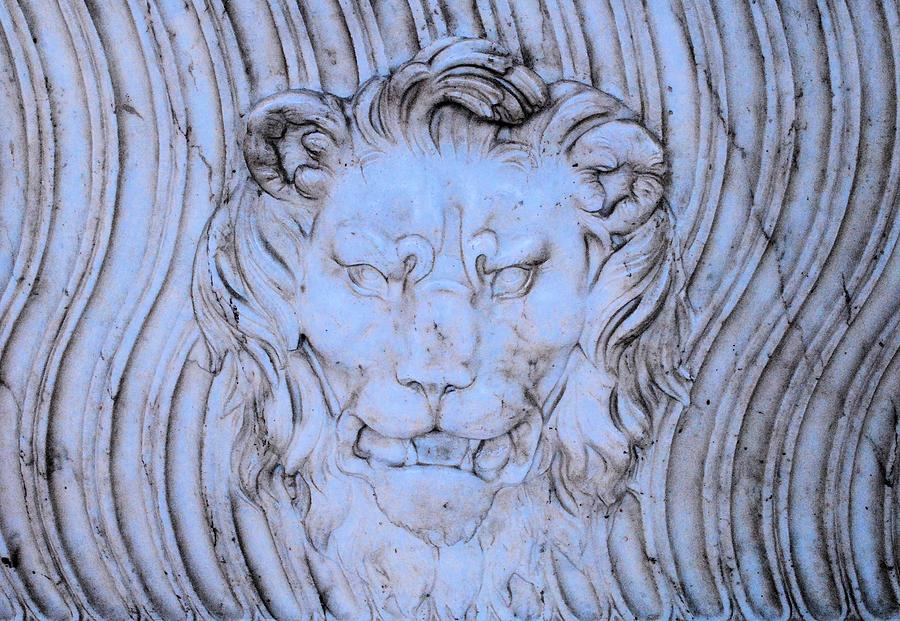 Water Photograph - Blue Lion by