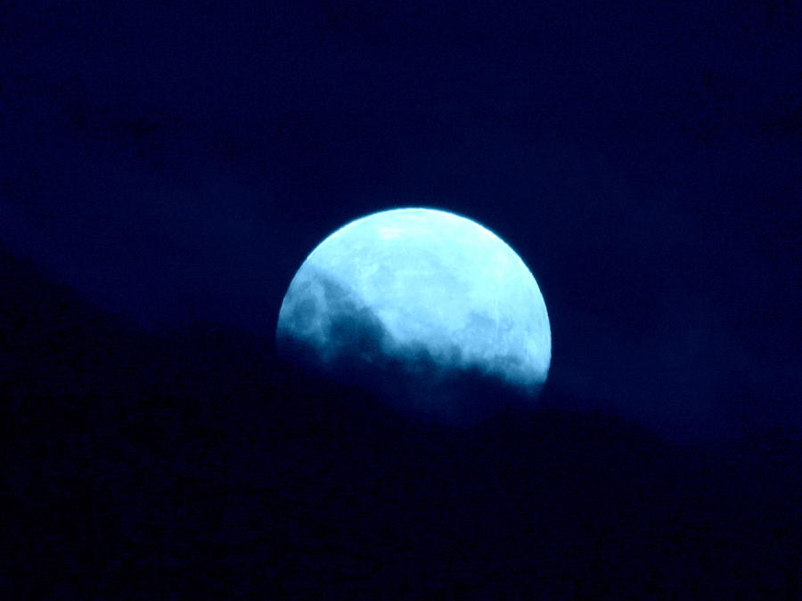 Blue Moon Photograph - Blue Moon by Joyce Woodhouse