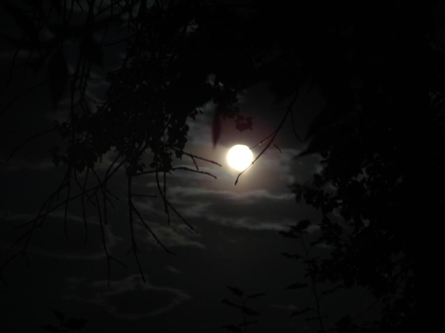 Moon Photograph - Blue Moon by K Walker