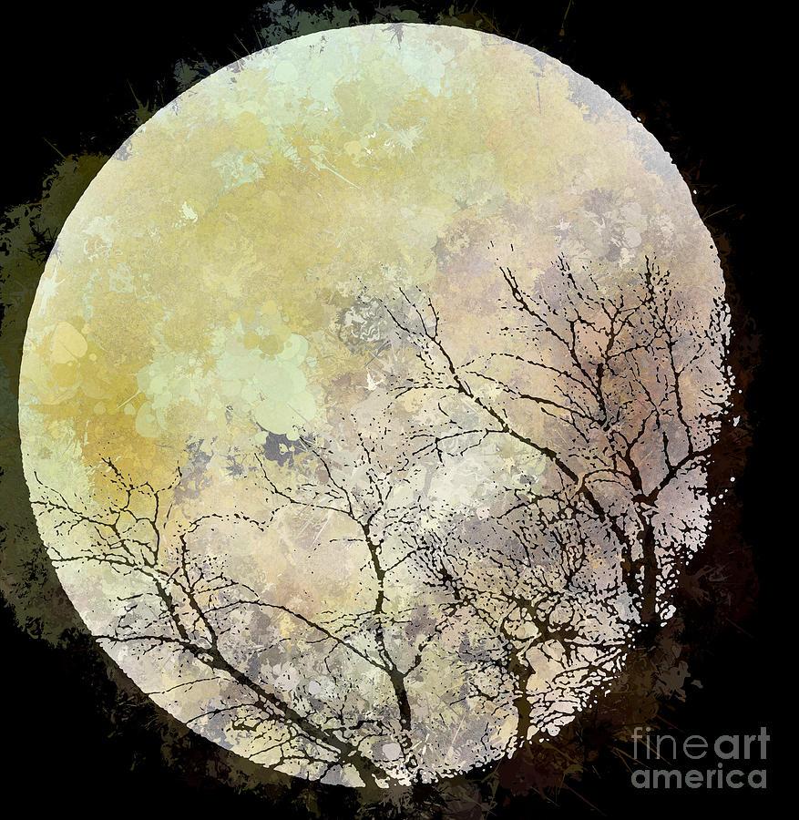 Aj Hansen Photograph - Blue Moon Rising by Arne Hansen