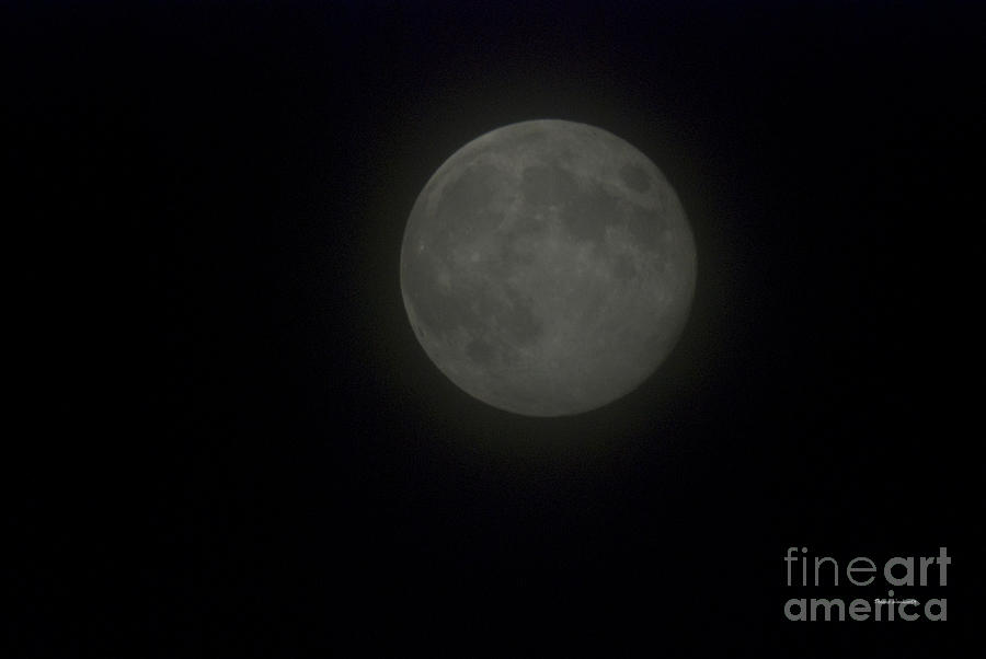 Full Moon Photograph - Blue Moon by Thomas Woolworth