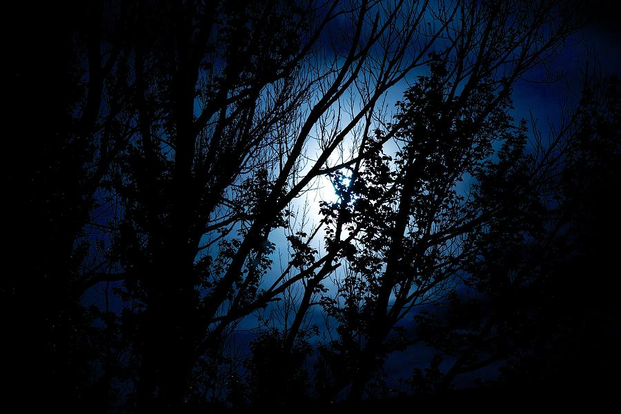 Moon Photograph - Blue Night by Kevin Bone