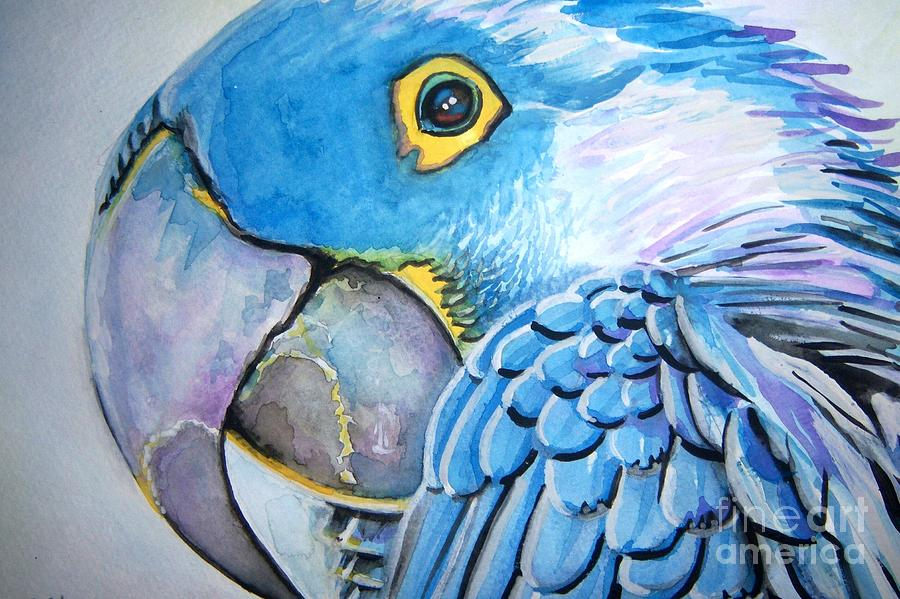 Parrot Painting - Blue Parrot by Ken Huber