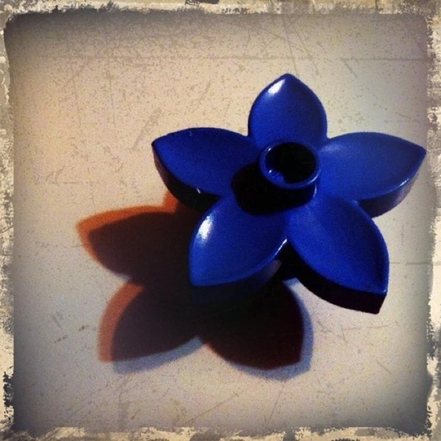Flower Photograph - Blue Plastic Flower by Ken Powers