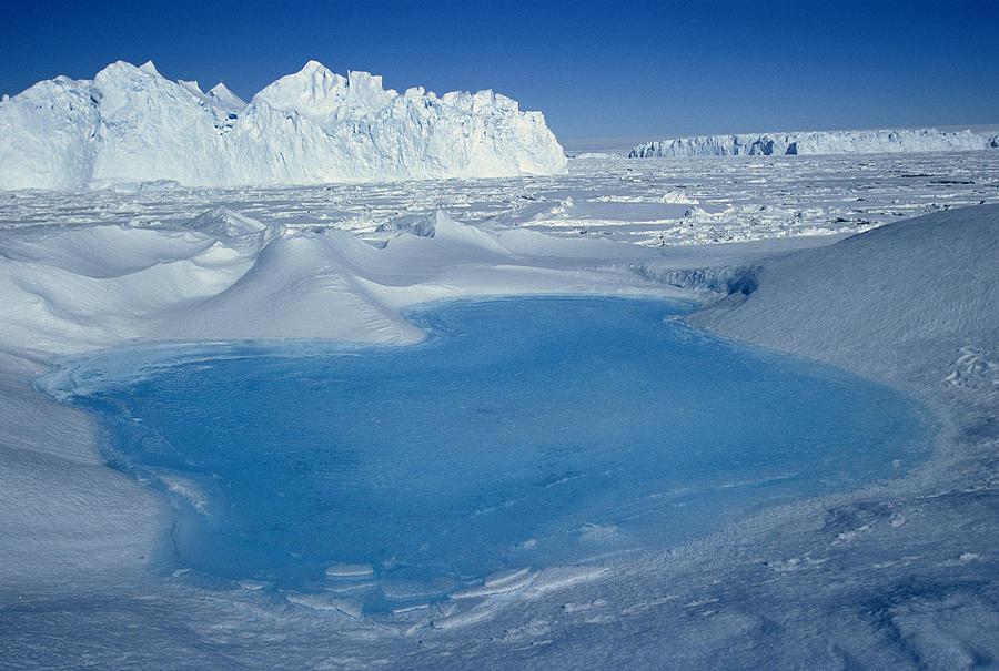 Blue Pool on Iceberg Antarctica Photograph by Colin Monteath