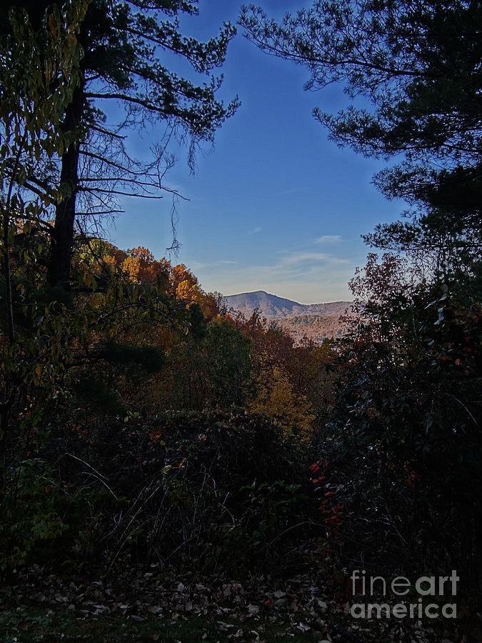 Blue Ridge Photograph - Blue Ridge13 by Steven Lebron Langston