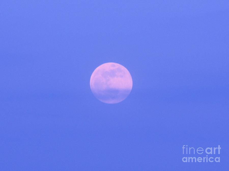 Moon Photograph - Blue Sky Moon by Michelle Powell