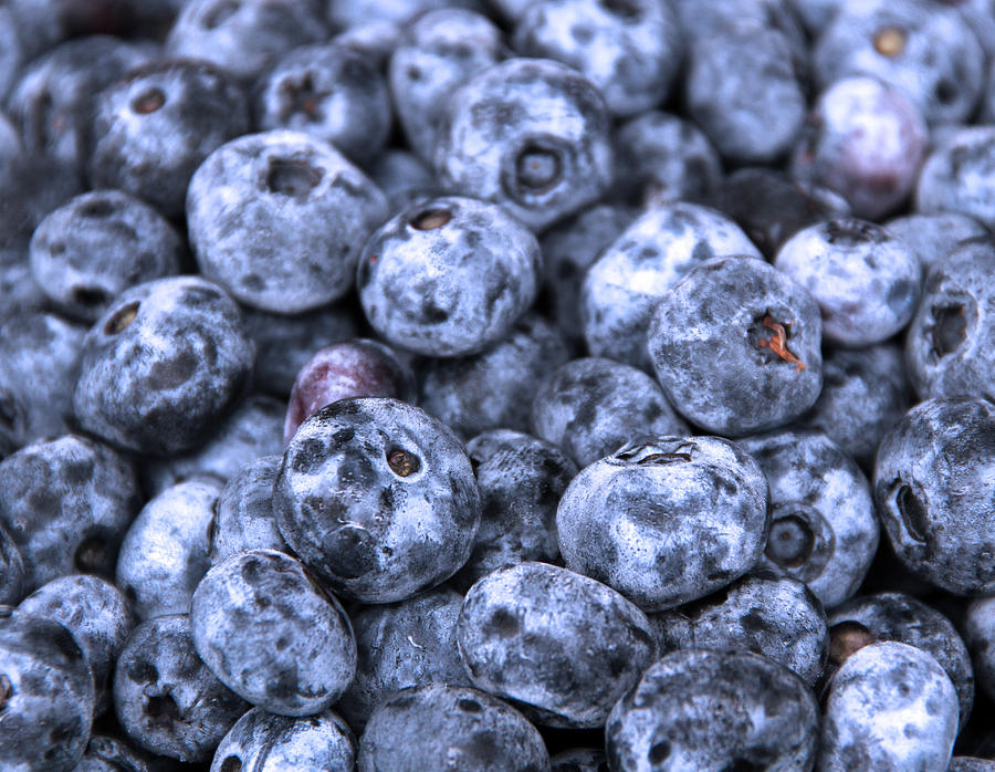 Berry Photograph - Blueberries  by Kim French