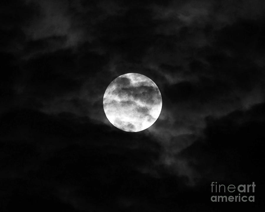 Moon Photograph - Blustery Blue Moon by Al Powell Photography USA