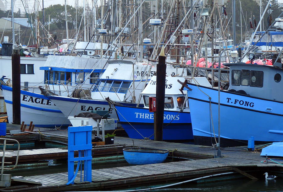 Dock Photograph - Boats Docked In Harbor by Jeff Lowe