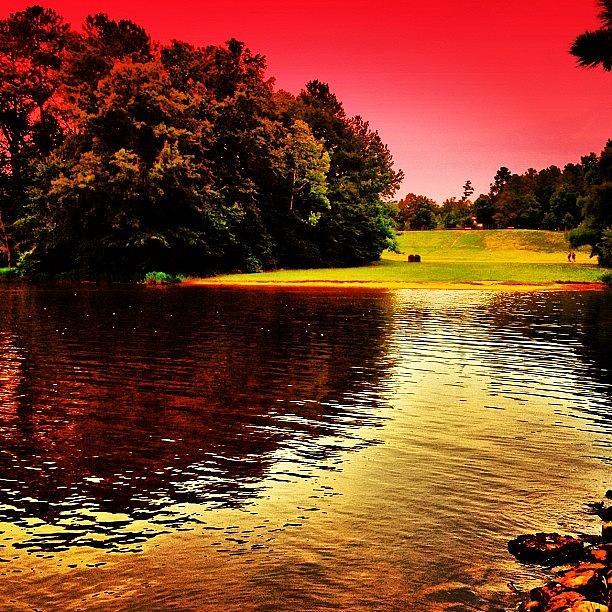 Redsky Photograph - Bond Park by Katie Williams