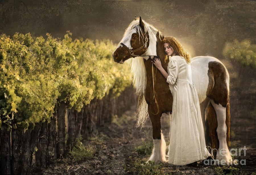 Horse Photograph - Bonded by Patty Hallman