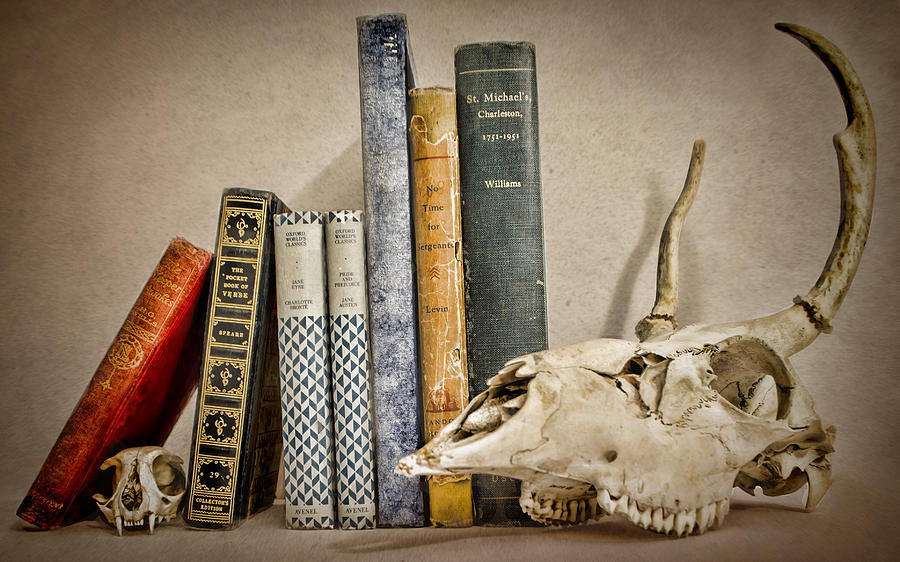 Bone Photograph - Bone Collector Library by Heather Applegate