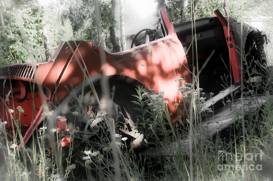 Auto Photograph - Bone Yard by Alise Caccese