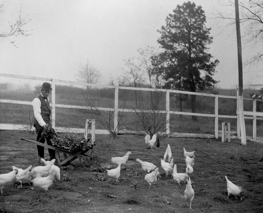 History Photograph - Booker T. Washington  1856-1915 by Everett
