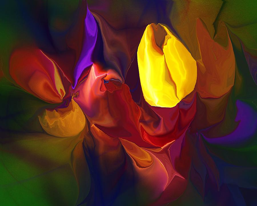 Abstract Digital Art - Botanical Fantasy 122011 by David Lane