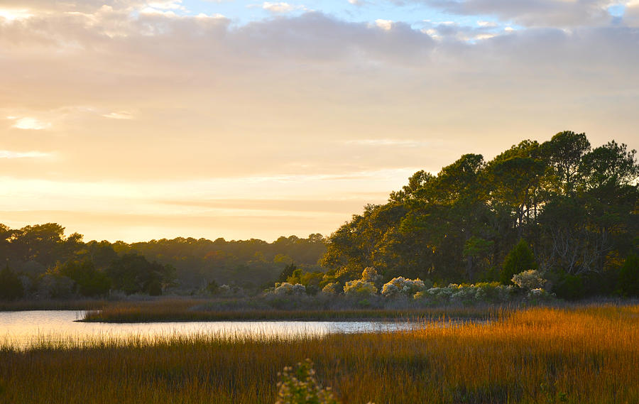 Botany Bay Sc Sunset Marsh Photograph by Lori Kesten