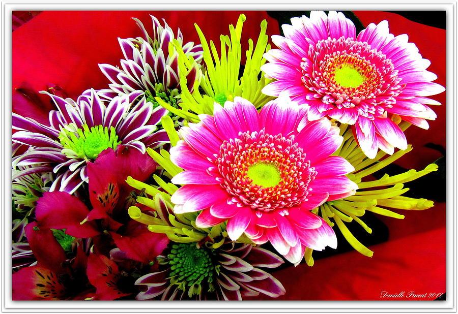 Botanical Art Prints Photograph - Bouquet De La  Passion by Danielle  Parent