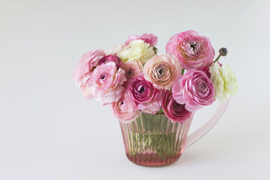 Horizontal Photograph - Bouquet Of  Pink Ranunculus by Elin Enger