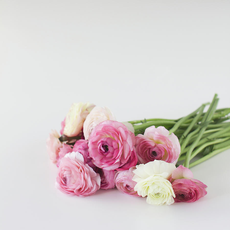 Square Photograph - Bouquet Of Ranunculus by Elin Enger