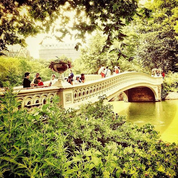 New York City Photograph - Bow Bridge - Central Park - New York City by Vivienne Gucwa