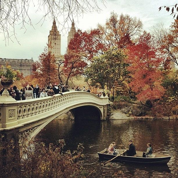Autumn Photograph - Bow Bridge, #centralpark, #nyc. #autumn by Luke Kingma