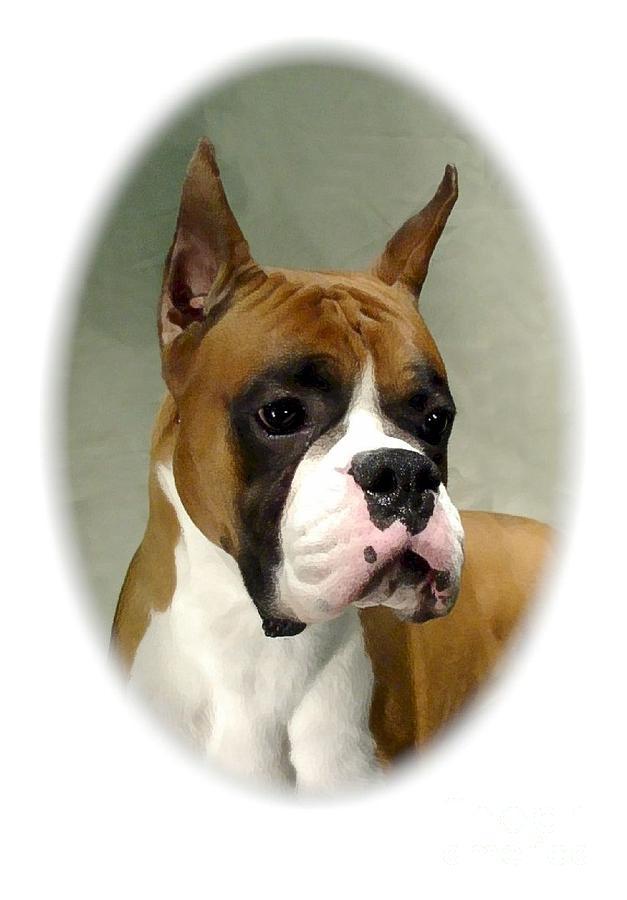 Dog Canvas Prints Digital Art - Boxer 1015 by Larry Matthews
