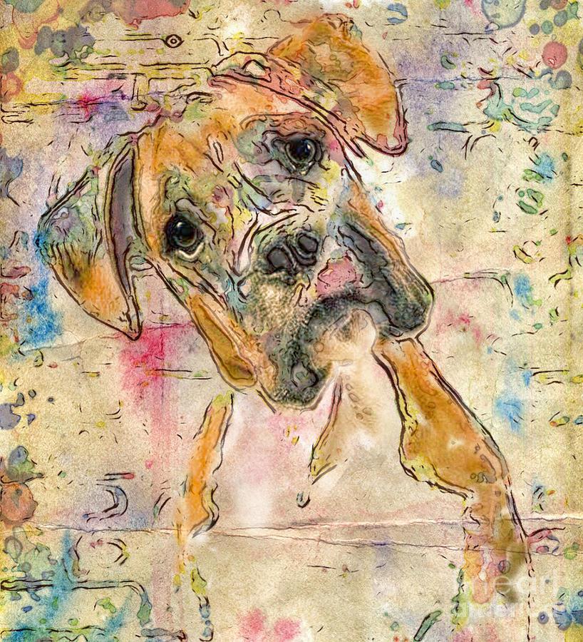 Boxer Digital Art - Boxer Babe by Marilyn Sholin