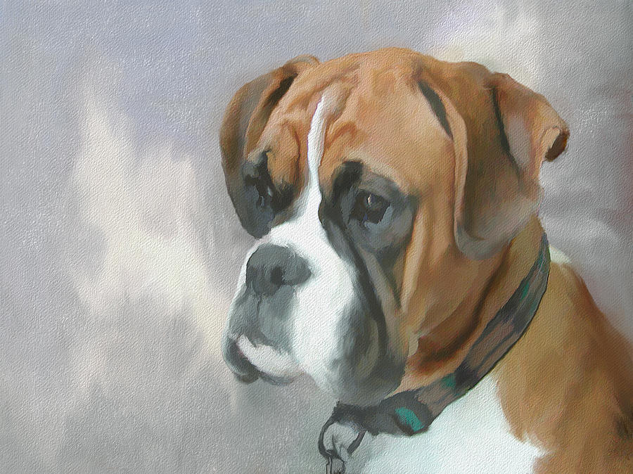 Dog Painting - Boxer by JG Keevil