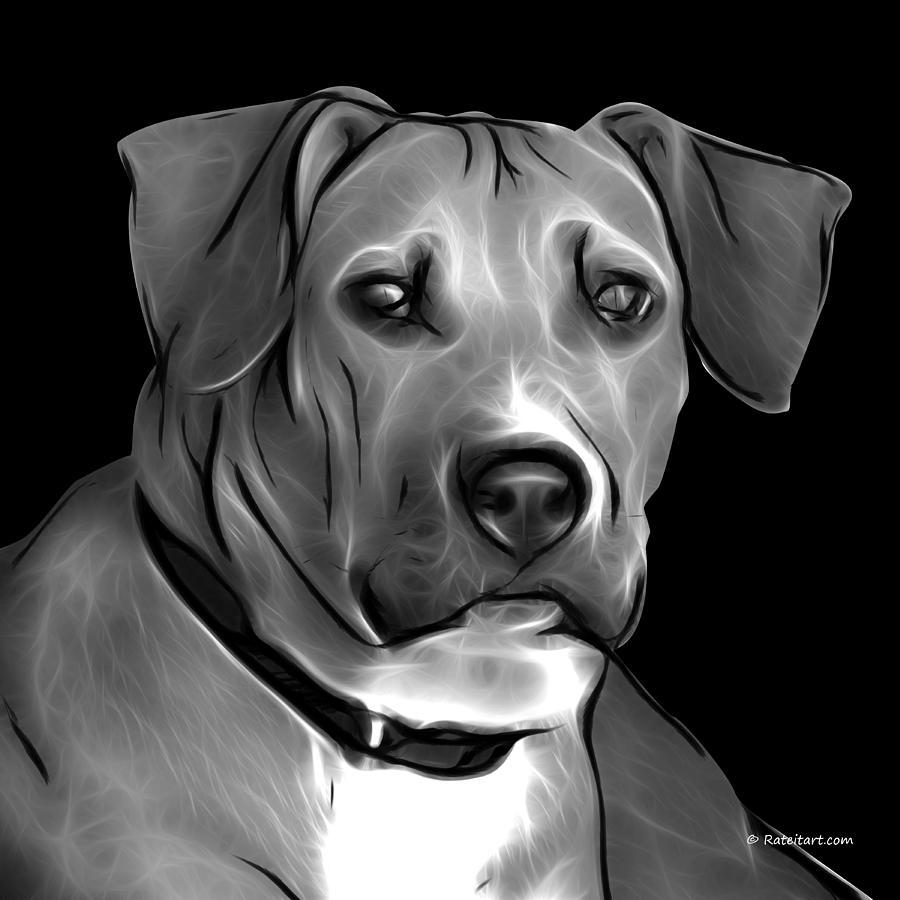 Pitbull Digital Art - Boxer Pitbull Mix Pop Art - Greyscale by James Ahn