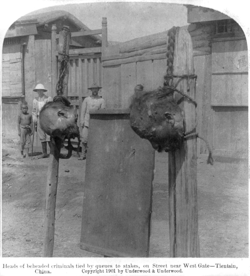 1900s Photograph - Boxer Rebellion, Heads Of Beheaded by Everett