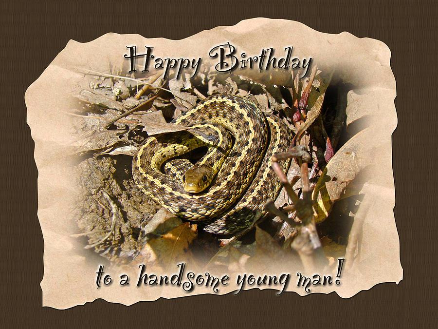 Boy Birthday Greeting Card Baby Garter Snake Photograph by – Birthday Greeting Cards for Boys