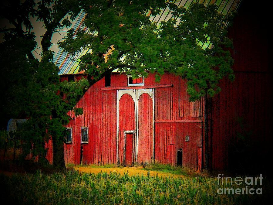 Barn Photograph - Branch Over Barn Door by Joyce Kimble Smith