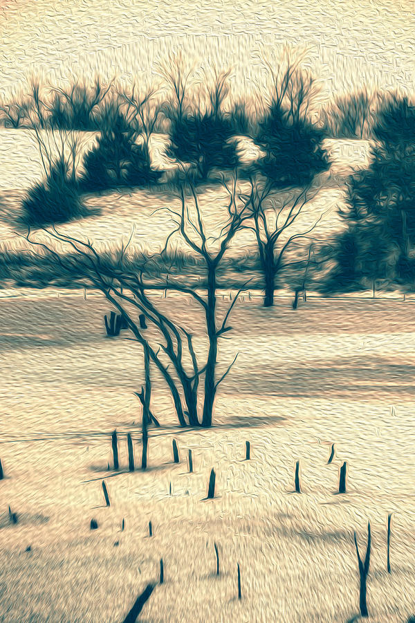 Cold Photograph - Branched Reprieve by Bill Tiepelman
