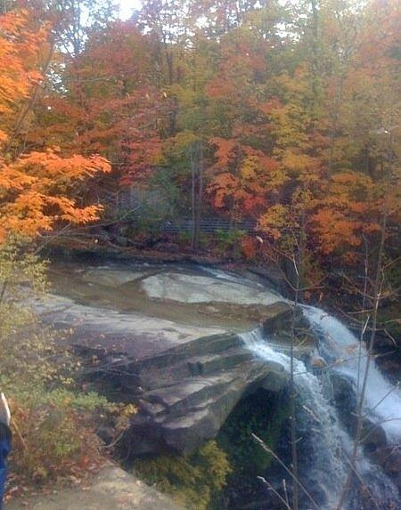 Brandywine Photograph - Brandywine Falls In The Fall by Tom Lavelle