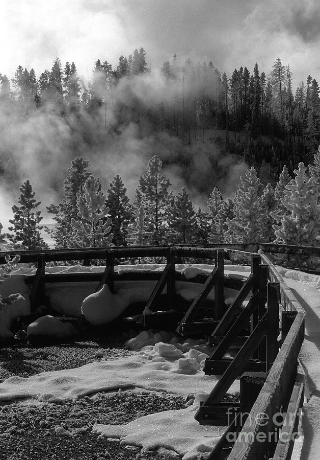 Sandra Bronstein Photograph - Bridge In Mud Volcano Area by Sandra Bronstein