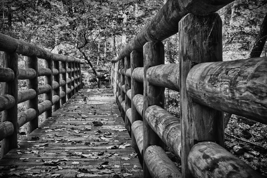 Bridge Near Cascade Falls Photograph
