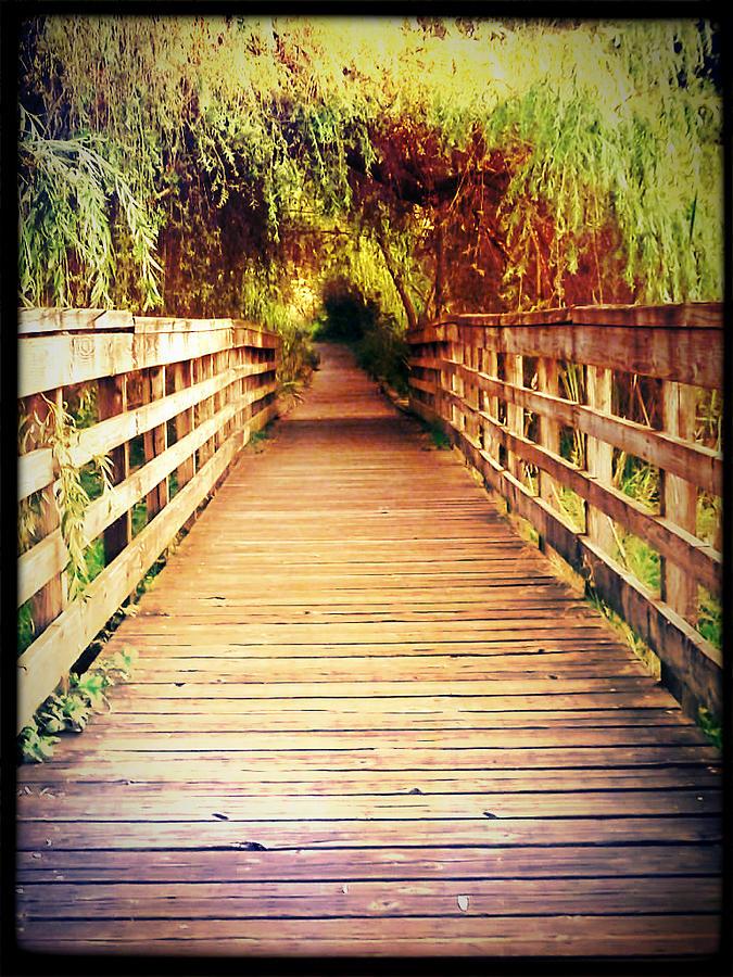 Bridge To Serenity Photograph by Lee Yang