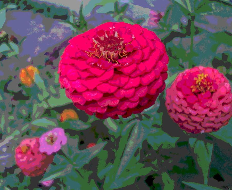 Zinnia Flower Photograph - Bright Red Zinnia Flower by Padre Art