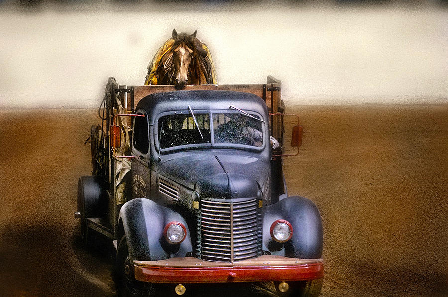 Horse Photograph - Broke To Ride by Pamela Steege