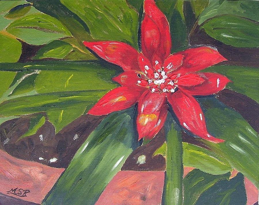 Bromeliad Painting - Bromeliad Bloom by Maria Soto Robbins