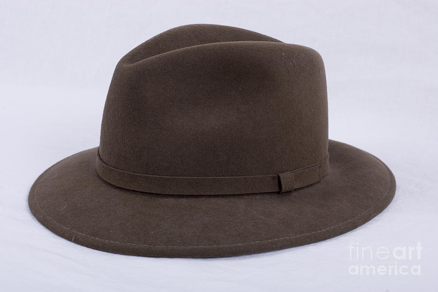 Brown Fedora Hat Photograph by Alan Look 5c5435149f7