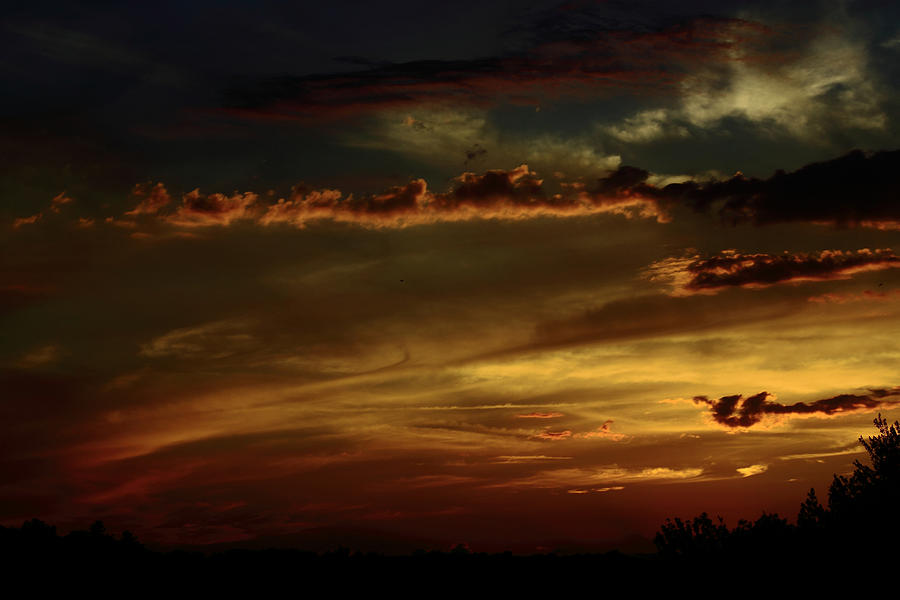 Landscape Photograph - Brush Strokes by Tanya Chesnell